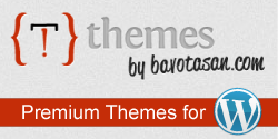 Premium Wordpress Magazine Themes